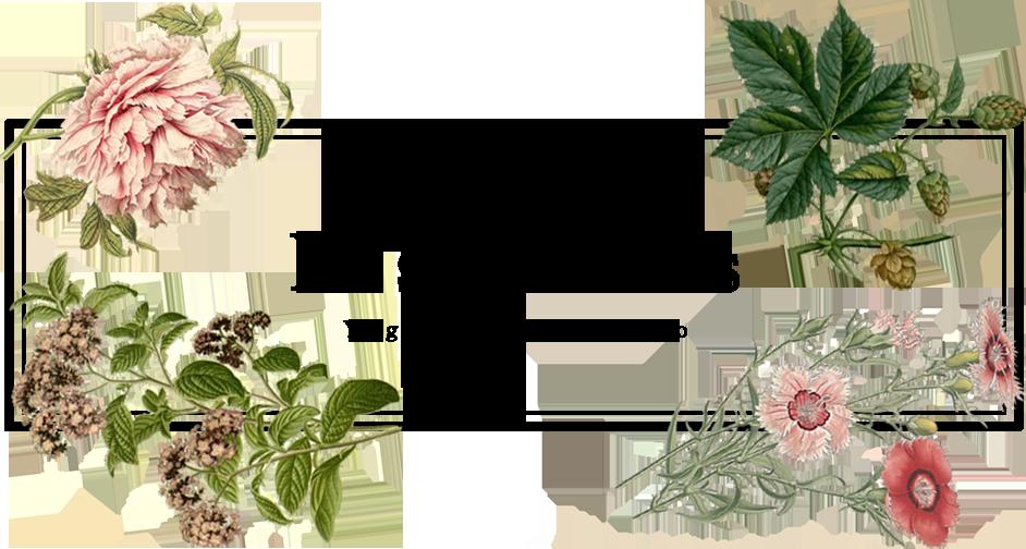 レ・フルール | ピラティス・ヨガ 菊名